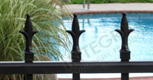 Black Aluminum Fencing with Ornamental Fleur de Lis Finials