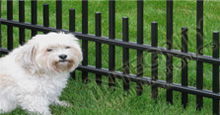 Puppy Picket Pet Friendly Aluminum Safety Fence in Black
