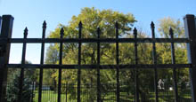 Bella Terra Residential Metal Gate in Black