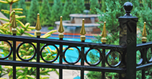 Camelot Aluminum Pool Fencing With Decorative Gold Finials and Circle Enhancements