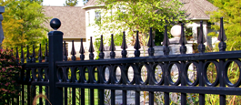 Camelot Commercial Aluminum Fence With Optional Finials and Decorative Cirlces