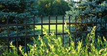Bella Vista Aluminum Residential Fencing With Flat Finials