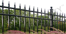 Mission Point Black Metal Residential Fence Panels and Gate With Finials