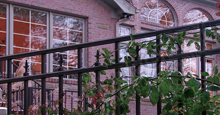 New Orleans Black Metal Industrial Fence Panels and Gates With Historic Fleur de Lis Finials